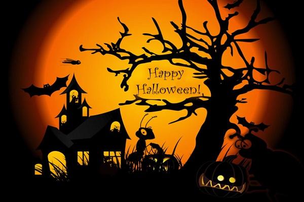 Halloween Day | Charu Fashions